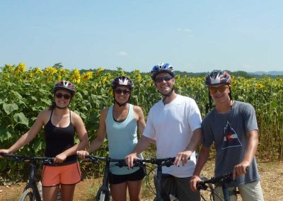 San Gimignano to Siena bike tour - Tuscany countryside sunflowers | bikeinflorence.com