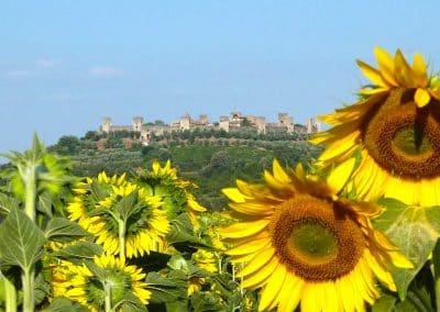 San Gimignano to Siena