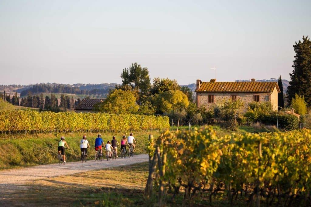 Family Biking Tour thru the vineyards: Bike Florence & Tuscany