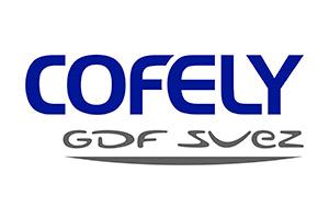 Cofely Gdf Suez Spa