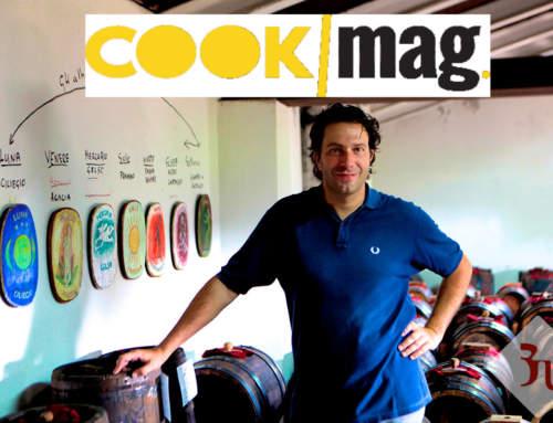 Cook Magazine – Acetaia Guerzoni, quando il rispetto della tradizione e della natura risulta vincente